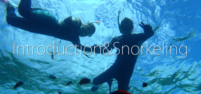 introduction&Snorkering.jpg