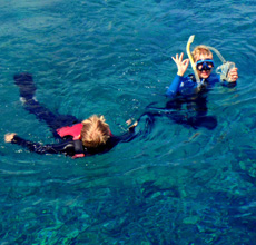 Half day snorkeling (1 Snorkeling)
