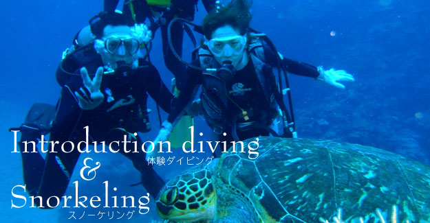 Introduction diving&Snorkeling